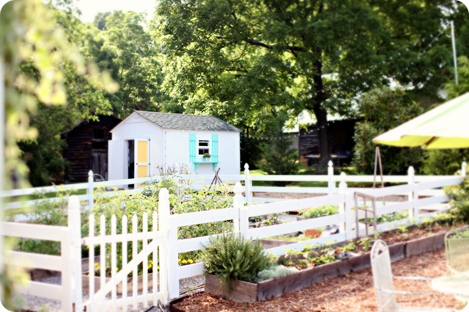 farm-shots_005.jpg