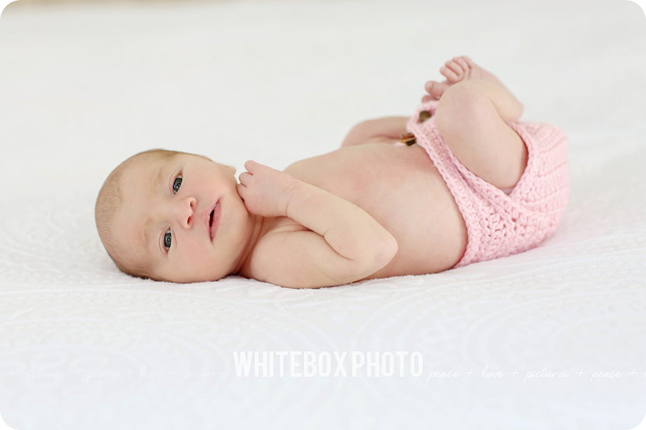 the collins newborn session at the whitebox photo studio 2017.