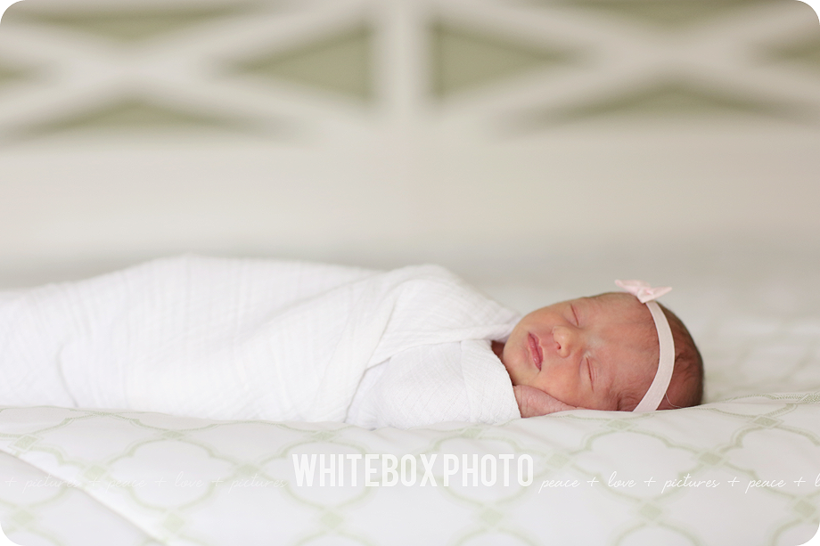 emmerson's newborn session in raleigh, nc by whitebox photo.