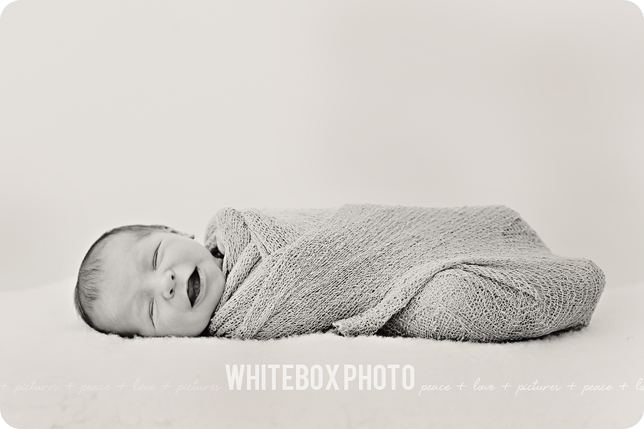 john arnold's newborn session at the whitebox studio 2017.