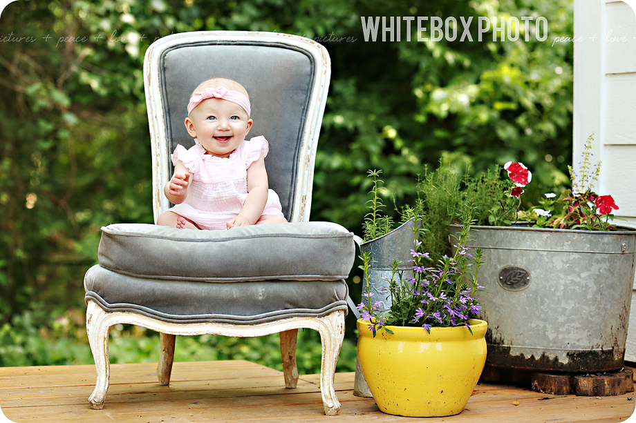 collins 6 month photo session at the whitebox photo farm in 2017.