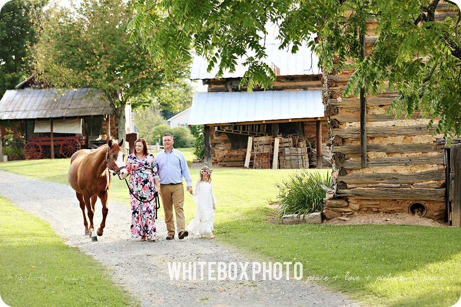 the sparks family/maternity session at horse farm by whitebox photo 2017.